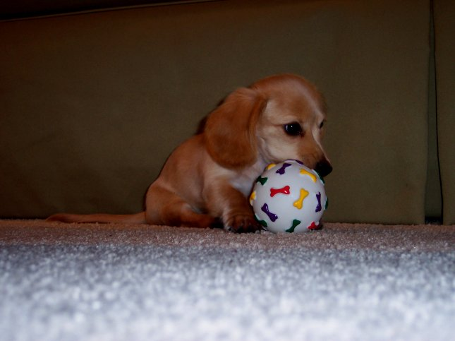 Me with my ball