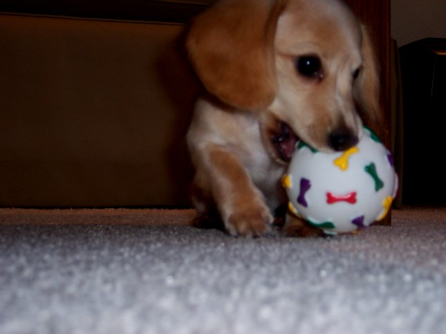me with ball