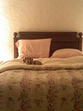 Bedtime?